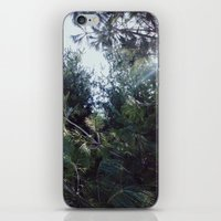 clear iPhone & iPod Skins featuring Clear by Nicholas Driver