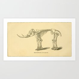Vintage Print - The Canadian Naturalist and Geologist (1856) - The Mastodon Art Print