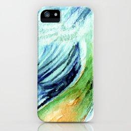 Exotic Blue bird iPhone Case