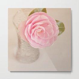 Single pink Camelia rose in clear vintage vase. Metal Print