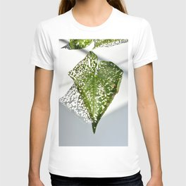 Leaf Light II T-shirt