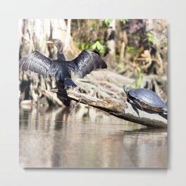 Watercolor Turtle, Eastern Painted Turtle 26, Merchants Millpond, North Carolina Metal Print