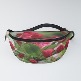 About To Open Wide Fanny Pack
