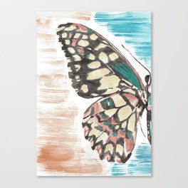Unsaturated Watercolor Butterfly Canvas Print