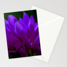 Herbstzeitlose / Autumn crocus Stationery Cards