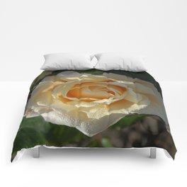 yellow rose Comforters