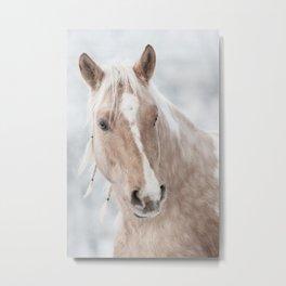 Horse Print Metal Print