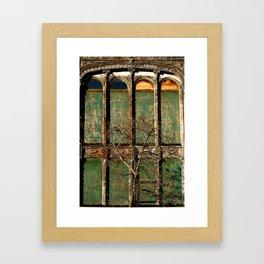 Petri Building Framed Art Print