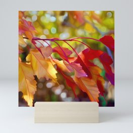 Autumn Morning Mini Art Print