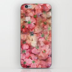 Spring is in the Air 6 iPhone & iPod Skin