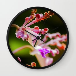 Macro Nature Photography: Abstract Alien Orchid Wall Clock