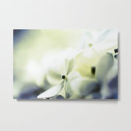 Flower Series - Dream - 11 Metal Print