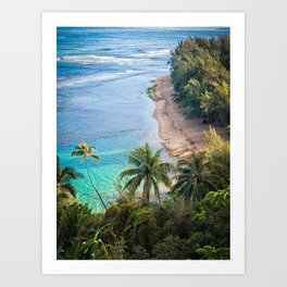 Beach Palm Trees Kauai Art Print