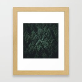 Dark Pines Framed Art Print