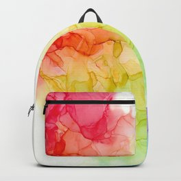 Study in Rainbow Backpack