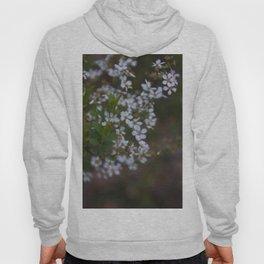 Floral Print 094 Hoody