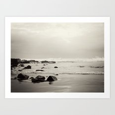 Wild Coast South Africa Art Print