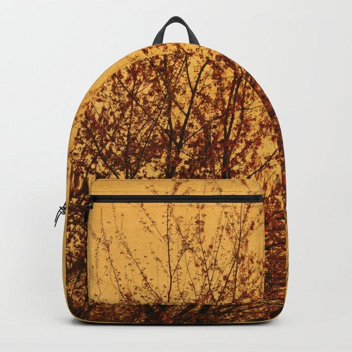 DUSK Backpack