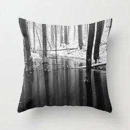Snow exposure Throw Pillow