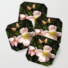 The Sally Holmes Single Rose Coaster