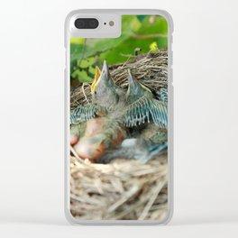 Azores blackbird nest Clear iPhone Case