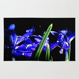Among the Ladies Artist Series jGibney Irises Rug