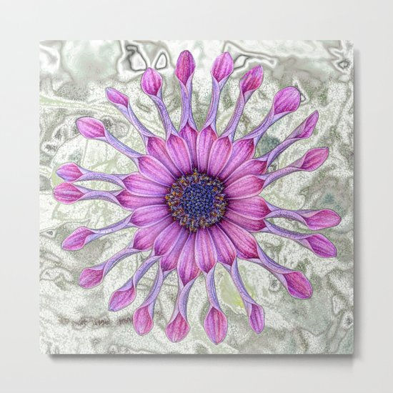 Daisy (flowers collection) Metal Print
