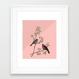 Peaceful harmony in the cherry tree - Illustration Framed Art Print
