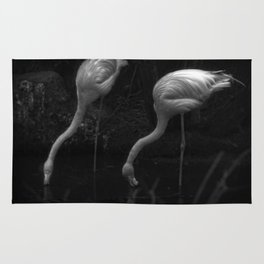 Drinking Flamingo's Rug