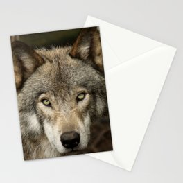 The intensity of the timber wolf Stationery Cards