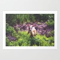 A Deer in the Bush Art Print