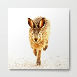 Wait For Me Guys! Hare running #decor #society6 Metal Print