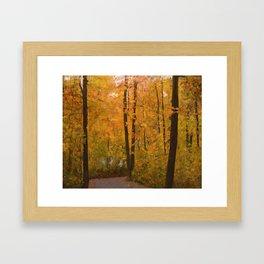 Colors of Fall #3 Framed Art Print