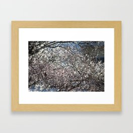 Iced Tree Framed Art Print