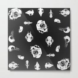 Animal skulls (black bg) Metal Print