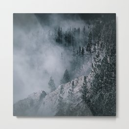 Enchanting forest 7 Metal Print