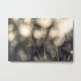 Branch in the forest Metal Print