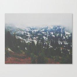 Mount Rainier in July Canvas Print