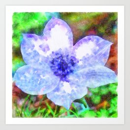 Blue Anemone Watercolor Art Print
