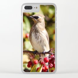 Cedar Waxwing in a Crab Apple Tree Clear iPhone Case