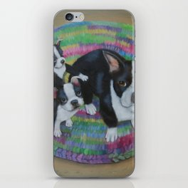 Boston Terrier and Puppies iPhone Skin
