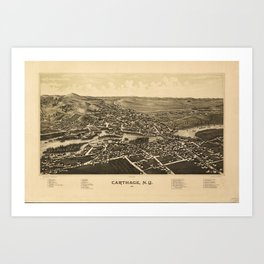 Aerial View of Carthage, New York (1888) Art Print