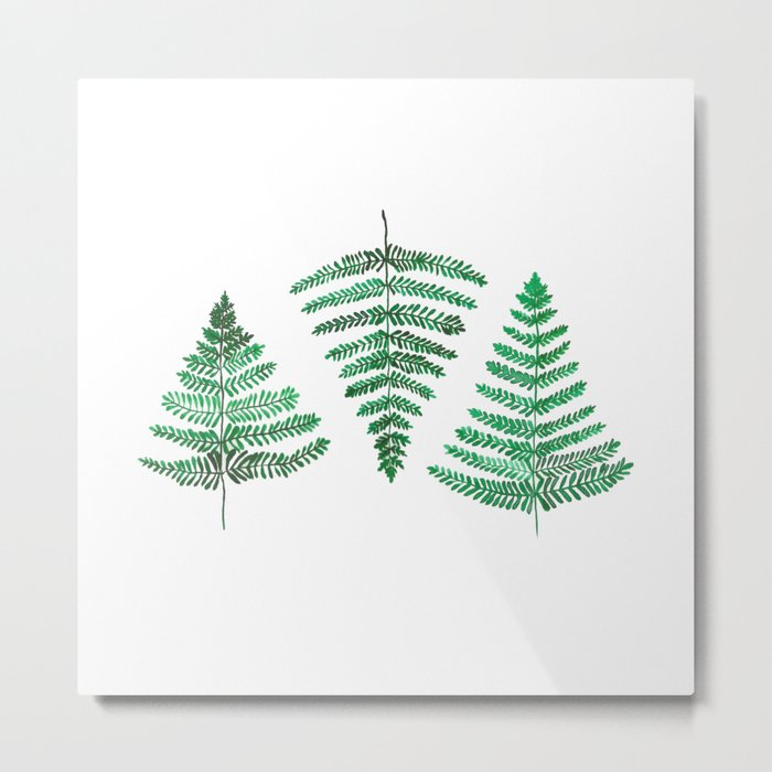 Fiordland Forest Ferns Metal Print