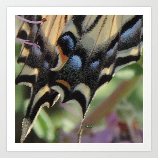 Detail of a Swallowtail Art Print