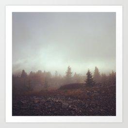 Canaan Valley Fog Art Print