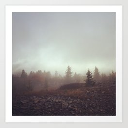 Canaan Valley Fog Art Print