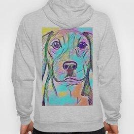 Color Dog Hoody