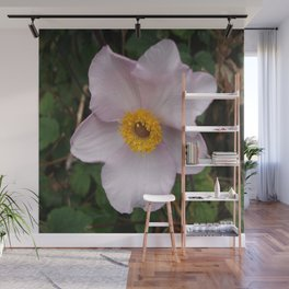 Japonica.  Wall Mural