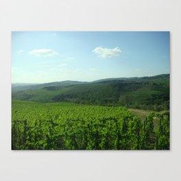 toscana 649 Canvas Print