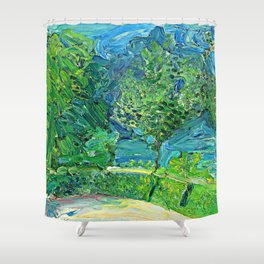 Richard Gerstl Lakeside Road near Gmunden Shower Curtain